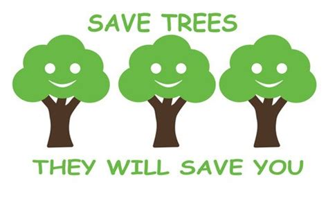 The importance of environment essay